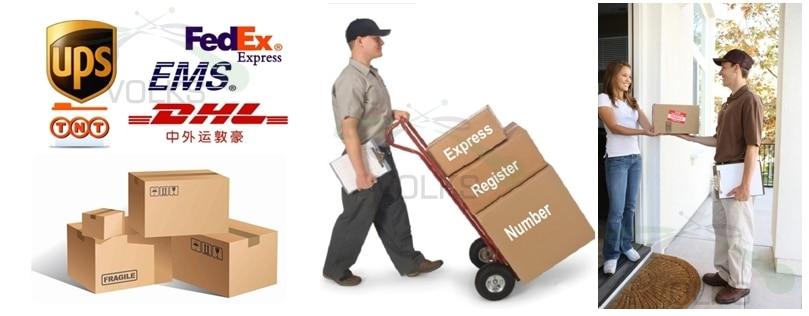 VOLKS-express-logo