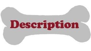 description22