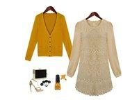 женщин повелительниц мода с длинным рукавом осень весна вышитые кружево оптовая продажа прямая поставка платье