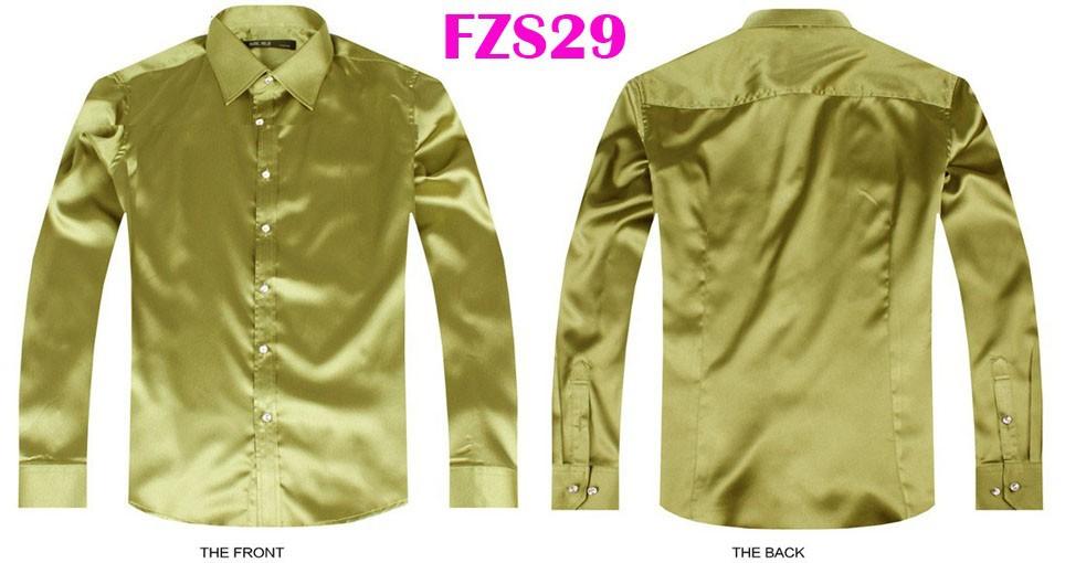 FZS29