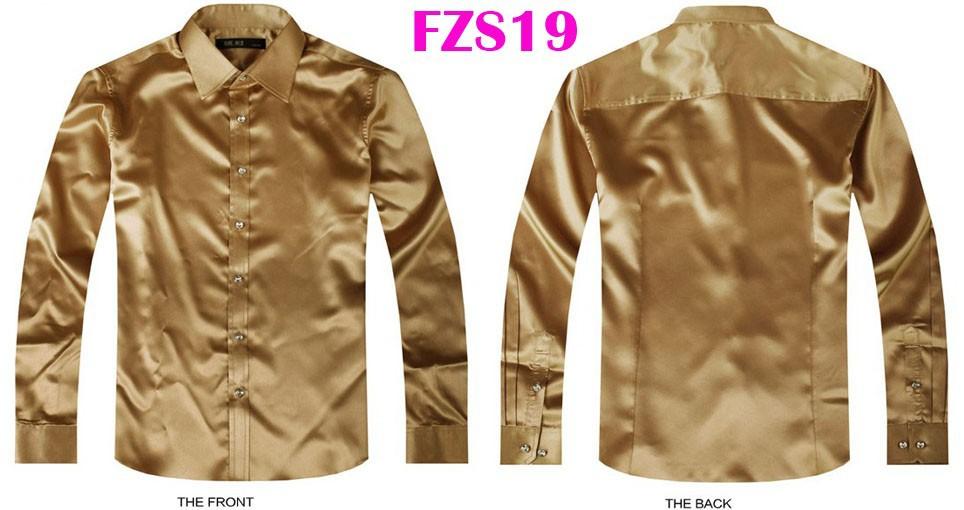FZS19