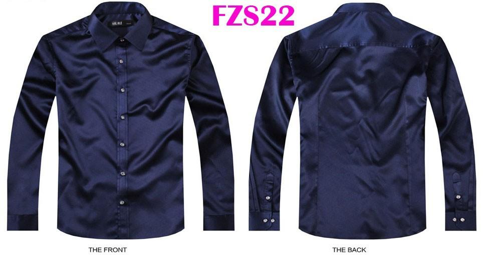 FZS22