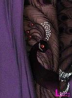 40д павлин печать мода сексуальное чистой колготки чулки оптовая продажа lmz007