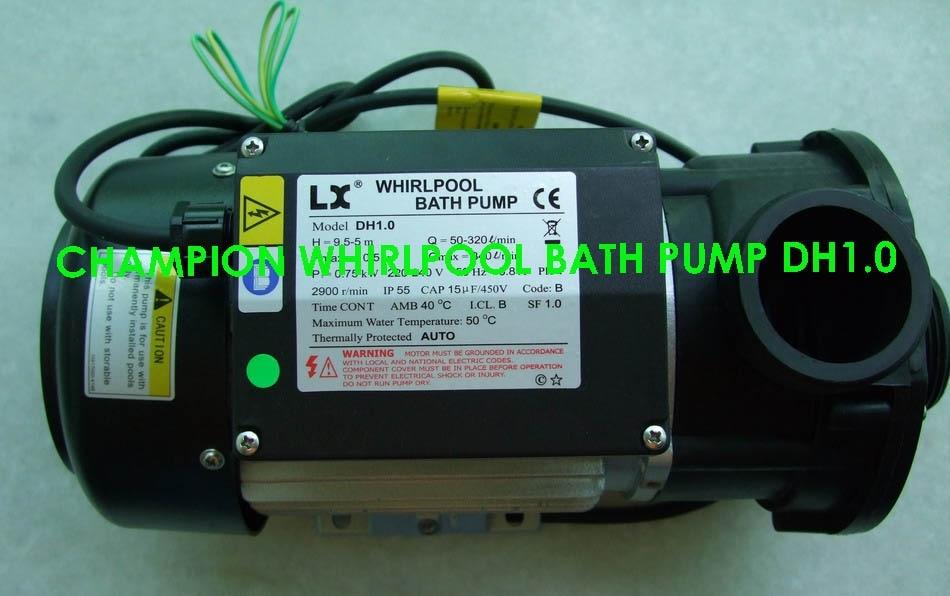 Hot Tub Circulation Pump DH 1.0 Whirlpool Chinese Jacuzzi Whirlpool ...
