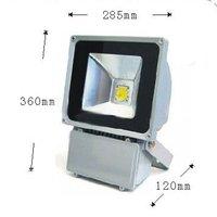 бесплатная доставка 100 вт белый из светодиодов прожектор мыть стены 8000 лм 220 в на открытом воздухе