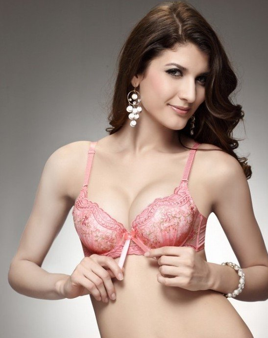 Pink)Sexy Bamboo Fiber Bra Push Up Embroidery Ladies Bra ...