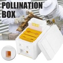 Домашний улей коробка для сбора урожая пчелиный улей Пчеловодство королевская коробка для опыления пчеловодства инструмент для сбора урожая пчелиный улей твердый кедр