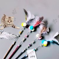 cat-toys-plastic-kitten-interactive-stick-funny-cat-fishing-rod-game-wand-feather-stick-toy-pet-supplies-cat-accessory