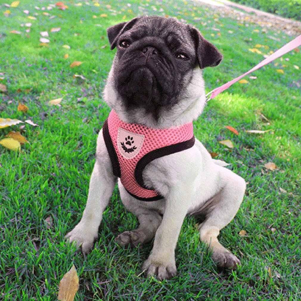 Breathable Washable มีความคงที่ Dog-stylet ชุดโบว์สายรัดสุนัขสายจูงสำหรับสุนัขขนาดเล็กแมวสัตว์เลี้ยงสายคล้องคอ leash