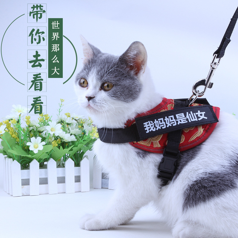 Cat Hand Holding Rope Anti-Break Free Regulation Liu Mao Sheng Usable Back Type Suspender Strap Ultra-small Dogs Anti-Lost Usefu