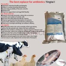 Bacille sous-tilis, peptides biotiques et antimicrobien pour la volaille et le poisson. Aucun allergène, Cecropin,Yingtai I, organique. Couche, gril