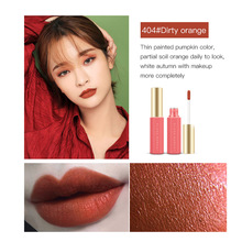 цена на Matte Nude Color Moisturizing Lip Glaze Lasting Waterproof Not Stunned Makeup Easy to Paint Dirty Orange Liquid Lipstick