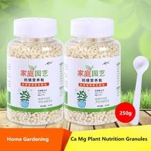 Fertilizer Slow Magnesium-Element Calcium Leaf-Compound Organic 250g Household-General-Purpose
