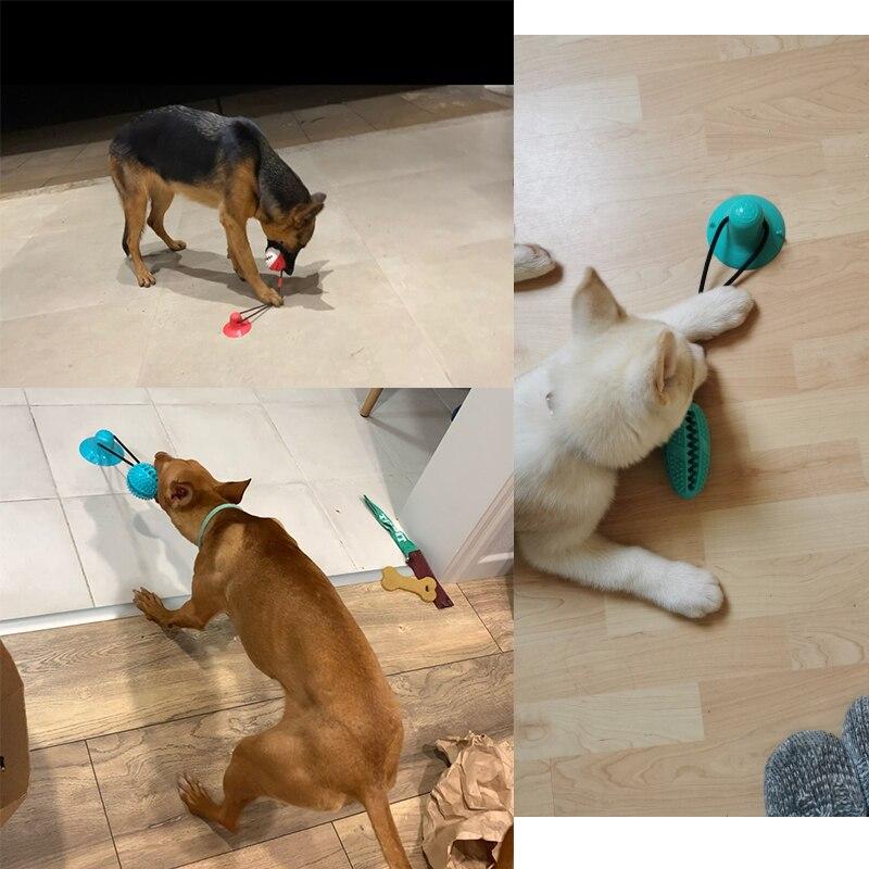 Собака игрушки силиконовые чашки всасывания буксир игрушка для домашних животных собак пуш-ап шарик-игрушка для питомцев для чистки зубов собаки Зубная щётка для щенков и небольших собак игрушка для кусания-5