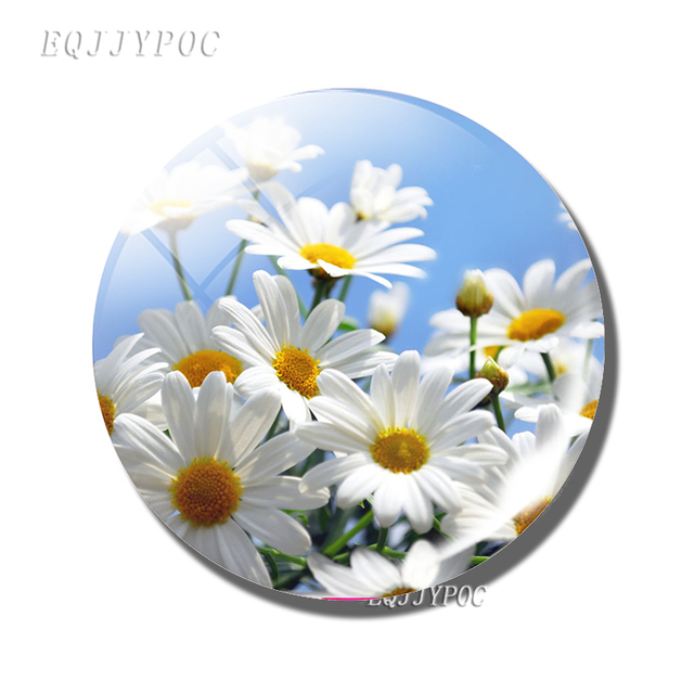 Daisy Flower Sticker Magnetic 30MM Glass Glass Natural Scenery Fridge Magnet for Refrigerator Leave Message for Home Decor 2