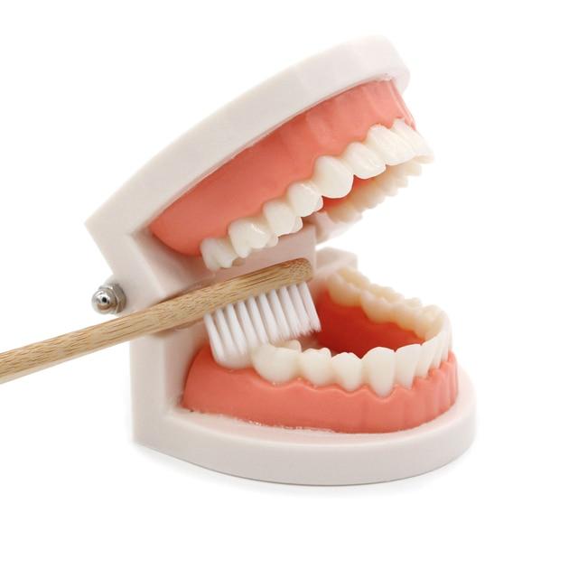 We teach children how to brush their teeth 4
