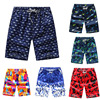 Summer Beach Shorts Men's Quick-Drying Casual Thin Floral New Style Pants Surfing Swimming Shorts