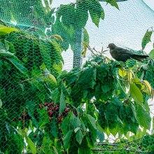 Anti-kuş ağı meyve bahçesi bağ balık gölet bahçe bahçe bahçe bahçe ürünleri ev balkon yaşlanma dayanıklı naylon bir