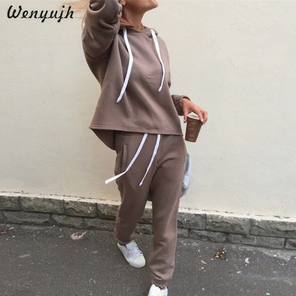 WENYUJH 2019 Autumn Tracksuit Long Sleeve Thicken Hooded Sweatshirts 2 Piece Set Casual Sport Suit Women Tracksuit Set Hoodies