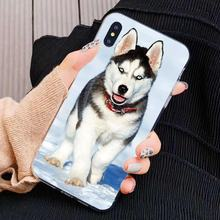 Silicone Phone Cover For Nokia X6 2 3 5 6 8 9 230 3310 2.1 3.1 5.1 7 Plus 2017 2018 lovely siberian husky(China)
