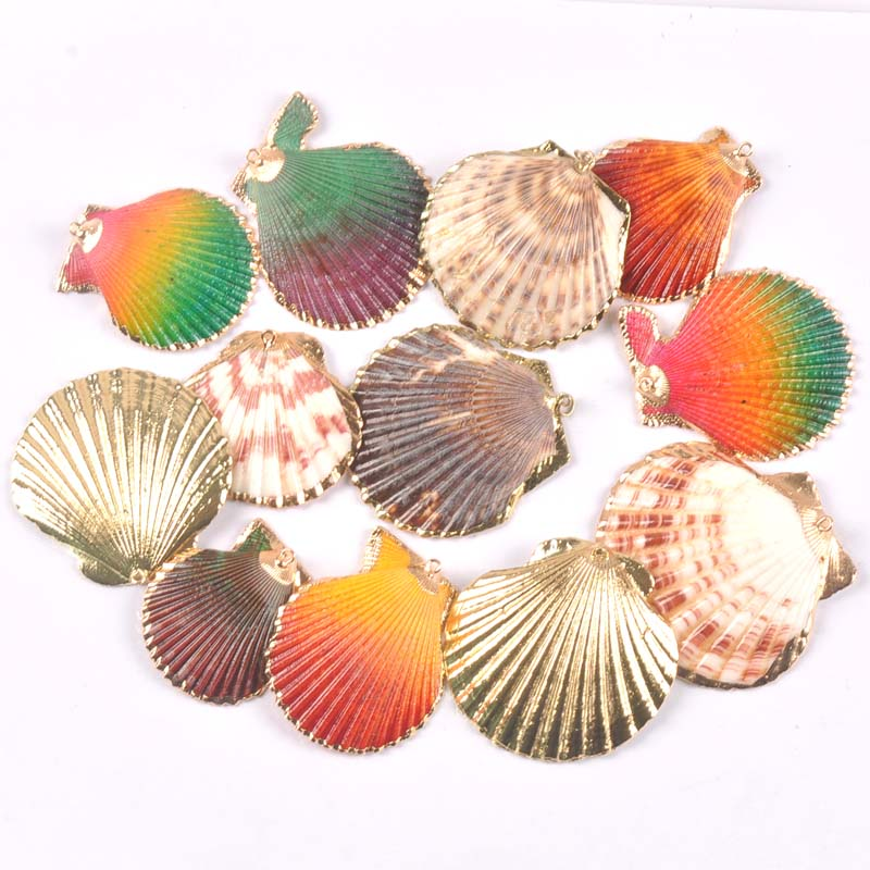 Natural Sector Seashell Gold Plated Shells For Earring DIY Handmade Charms Pendant Home Decoration 5pcs TRS0348