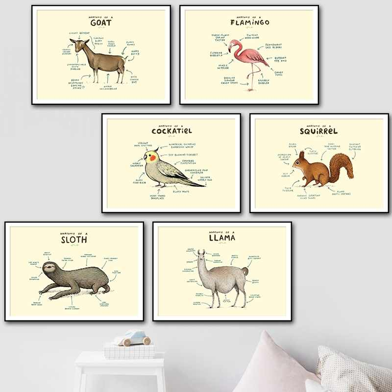 Wall Art Canvas Painting Nordic Posters And Prints Flamingo Fox Sloth Sheep Anatomy Modular Pictures For Living Room Home Decor