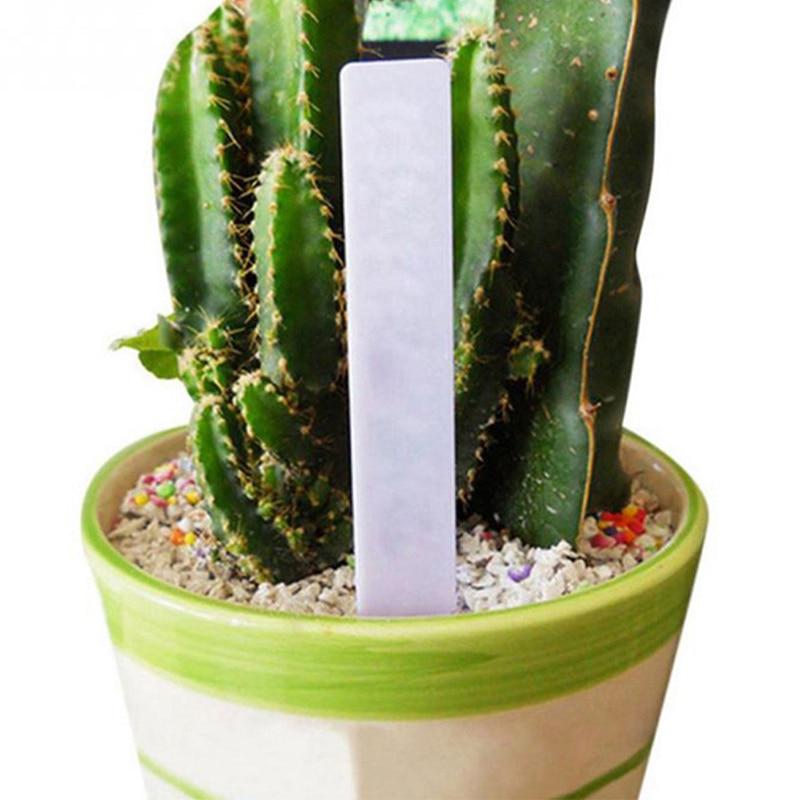 New Design Waterproof Plastic Plant Seed Labels Pot Marker Nursery Seedling Garden Stake Tags Cute Garden 50 Pcs White Labels