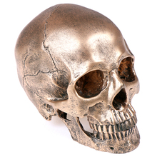 1PCS Bronze Resin Skull Model Sculpture Statue Crafts Halloween Home Decoration Painting Medical Model