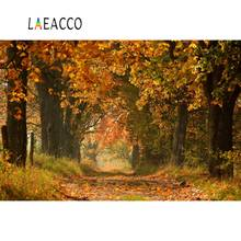 Laeacco Autumn Forest Old Trees Maplese Way Natural Scenic Photography Backgrounds Photographic Backdrops For Photo Studio