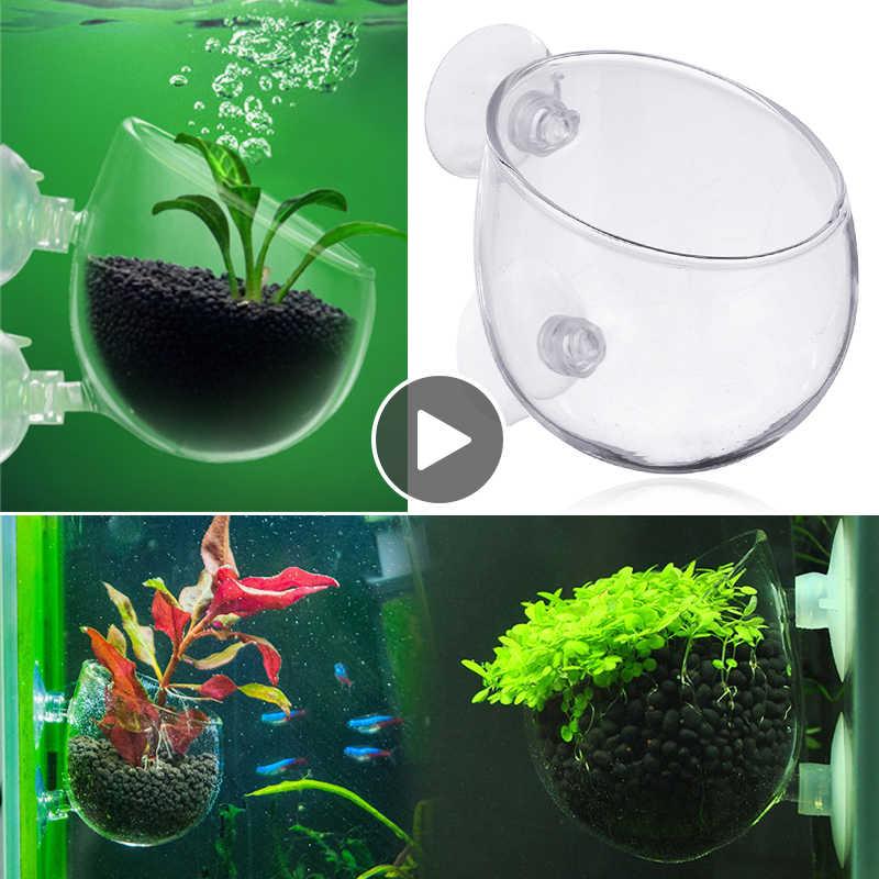 Hamiledyi Aquarium Plant Holder,Crystal Glass Aquatic Decor Plant Cup Pot with Suction Cups for Fish Tank Aquarium Aquascape Decoration,4 Pack