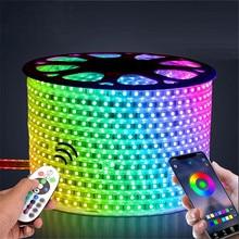 220V Светодиодные ленты светильник RGB SMD 5050 лента с помощью приложения на телефоне и дистанционное управление Водонепроницаемый гибкий неоновый светодиодный светильник s на открытом воздухе украшения комнаты лампа