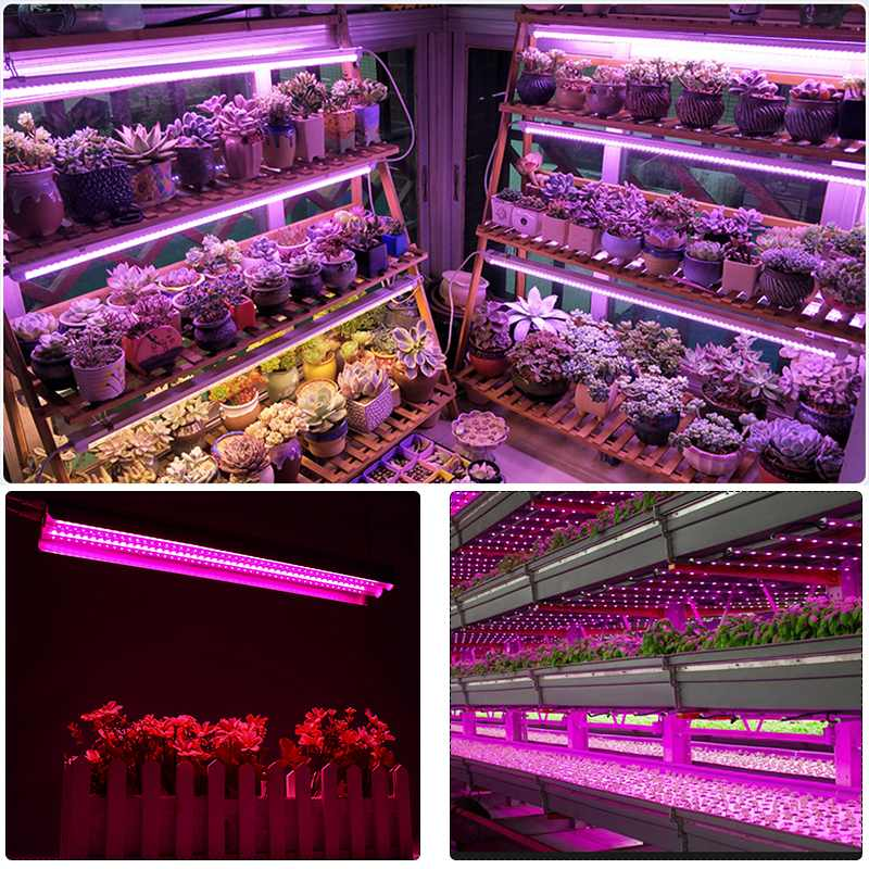 lowest price LED Grow Lights 500W Full Spectrum Growing LED Lamp Lighting 50cm Double tube plant chandelier for Hydroponic Indoor Plants