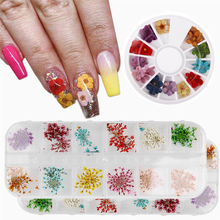 Mix Dried Flowers Nail Decorations 3D Natural Pressed Blossom Flower Leaf Stickers Floral Art Designs Manicure Accessories