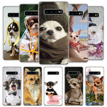Chihuahua Puppy Teacup psy pokrywa etui na telefony do Samsung Galaxy S20 Ultra S10 Lite uwaga 10 9 8 S9 S8 J4 J6 J8 Plus + S7 krawędzi Coq