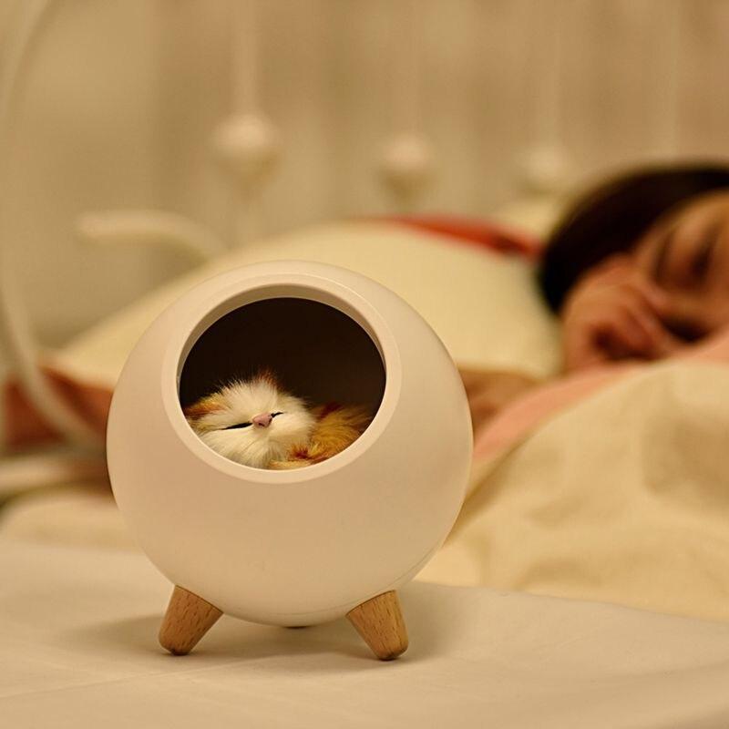 led bonito gato de casa atmosfera 02