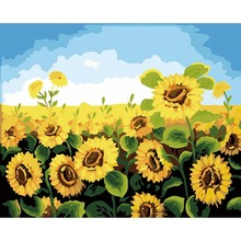 Frame Flower Sunflower Digital Acrylic Hand Painted Canvas Oil Paintings For Decoration Home Wall Art