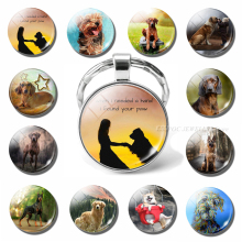 When I Needed Hand Found Your Paw Lovely Dog Keychain Glass Dome Jewelry Cute Animal Pendant Keyring Men Women Lover Gift