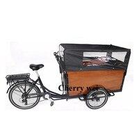 Promoção! Frete pelo mar cfr novo design três rodas elétrica comida bicicleta triciclo carrinho de bateria de lítio duas rodas bicicleta carga Processadores de alimentos     -