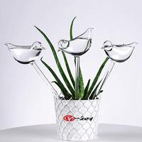 New 3 Pack Plant Waterer Self Watering Globes  Bird Shape Hand Blown Clear Glass Aqua Bulbs|Water Cans|   -