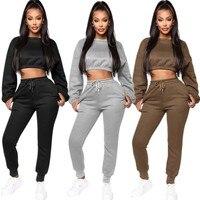 Echoine/зимние толстовки из плотного флиса, топы и штаны, комплект из двух предметов, женский спортивный костюм, укороченный топ, брюки, повседн...