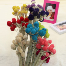 About 45cm Nature Real Dried Berry Flower DIY Floral Display Plant For Wedding Bouquet Home Room Party Gift Kaarsen Droogbloemen