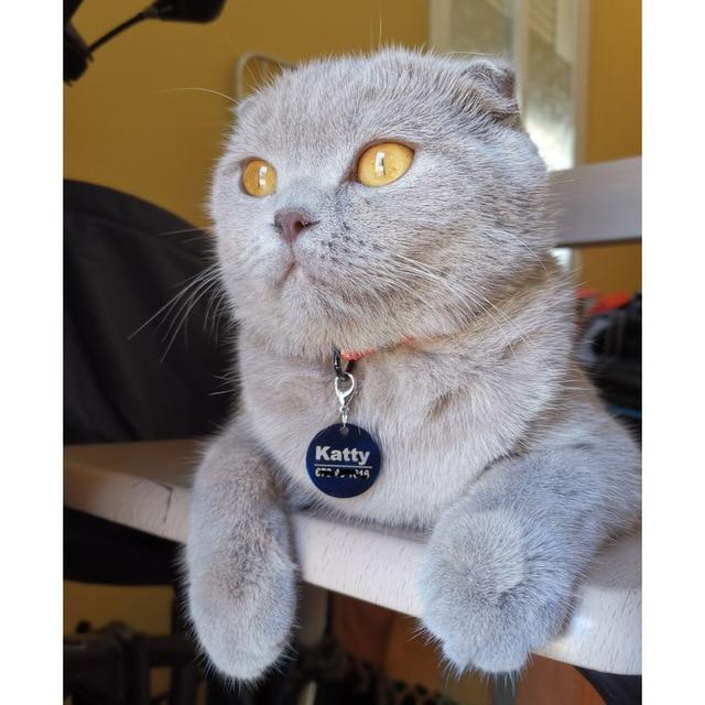 ID tag Free engraving Dog/Cat Collar Nametag  5