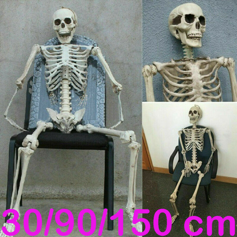 Halloween Prop Human Skeleton Luminous Full Size Skull Hand Life Body Body Poseable Anatomy Model Party Festival Decoration