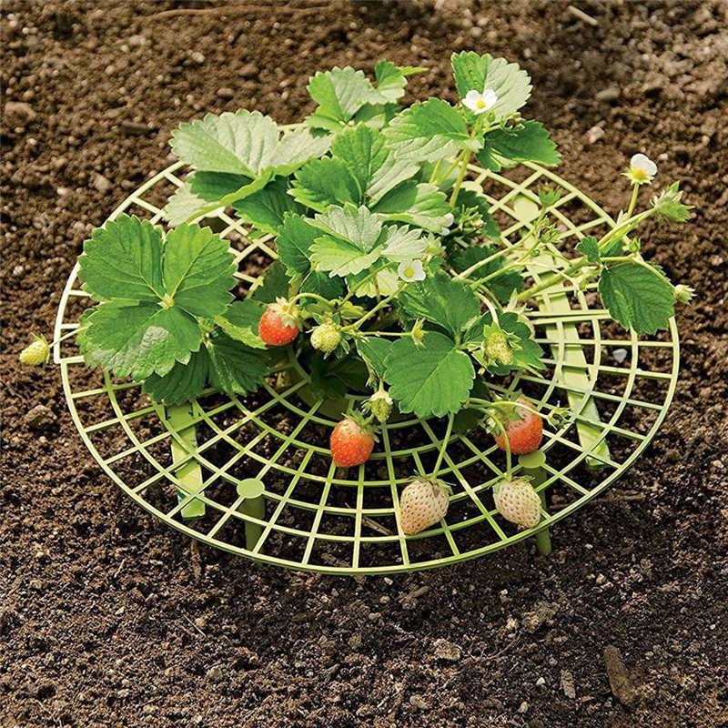 1 個バルコニー野菜ラック植物サポートイチゴ成長支持棚イチゴ保護棚果物イチゴスタンド