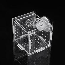 Isolation-Box Incubator Fish-Bowls Tank-Breeding Aquarium Acrylic Fish-Hatchery Reptile-Cage
