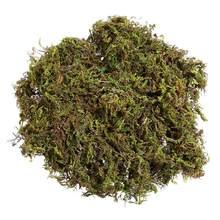 WINOMO-Simulación de liquen de musgo Artificial, plantas verdes falsas para decoración del hogar, jardín y Patio, alrededor de 60g, 3 paquetes