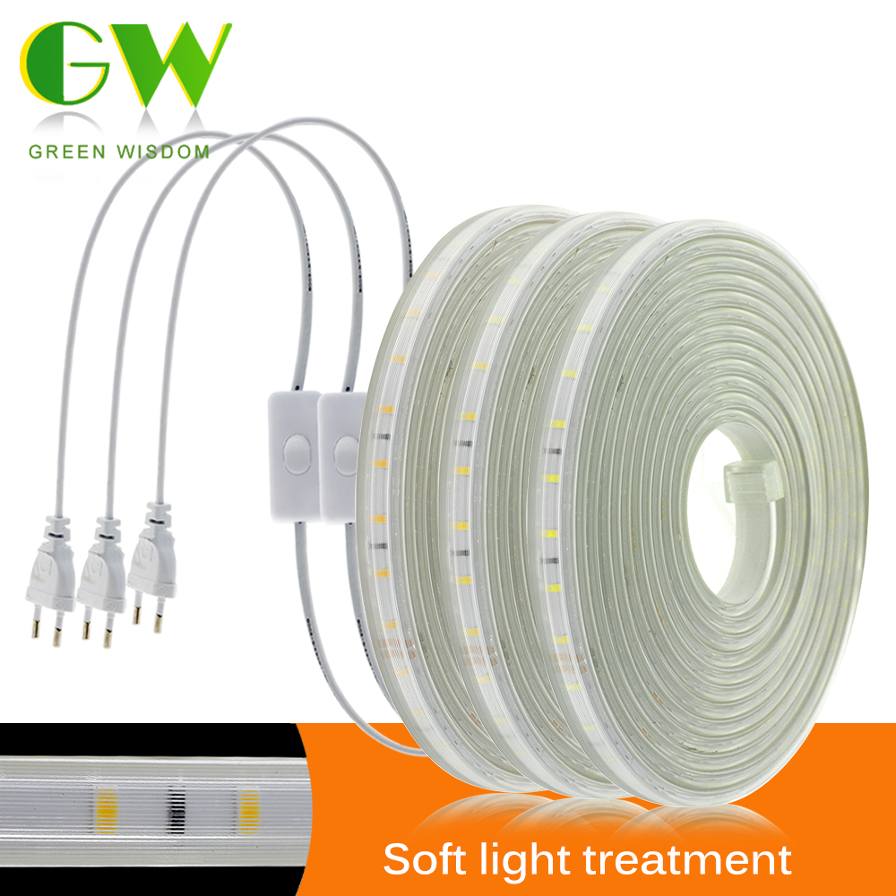 220V LED Strip Light 60LEDs/m 120LEDs/m Flexible Soft Lighting Diode Tape High Safety Indoor Outdoor Waterproof LED Strip 2835