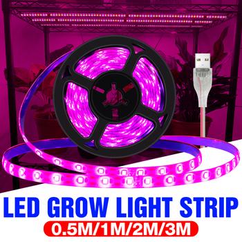 Lampa ledowa do hodowli roślin USB LED pełna spektrum roślin rosną taśmy 2835 SMD 0 5m 1m 2m 3m Fitolampy świetlówka do roślin roślina doniczkowa kwiat sadzonka tanie i dobre opinie PEIQI CN (pochodzenie) ROHS USB Grow Light Strip 10mm Plant Growth Light Led chip Rosną światła 2 year warranty 300cm