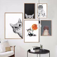 Каваи мультфильм животные кошка Искусство Холст Плакаты принты