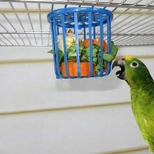 Bird-Supplies Parrot And Fruit Utensils Vegetable-Basket 1piece
